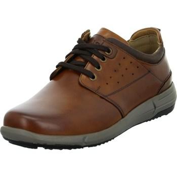 kengät Miehet Derby-kengät Josef Seibel Enrico 13 Ruskeat