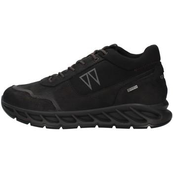 kengät Miehet Matalavartiset tennarit IgI&CO 8138400 BLACK