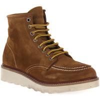 kengät Miehet Bootsit Docksteps TOBACCO OAKLAND 1726 Marrone