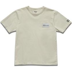 vaatteet Miehet Lyhythihainen t-paita Halo T-shirt blanc