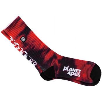 Asusteet / tarvikkeet Miehet Sukat Element Pota skate socks Punainen