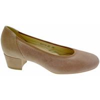 kengät Naiset Korkokengät Calzaturificio Loren LO60713rept marrone