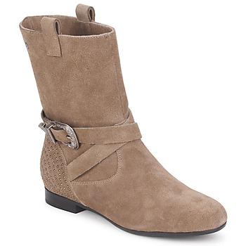 kengät Naiset Bootsit Couleur Pourpre TAMA Taupe