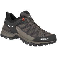 kengät Naiset Vaelluskengät Salewa Mtn Trainer Lite GTX 61362-7517 black, brown