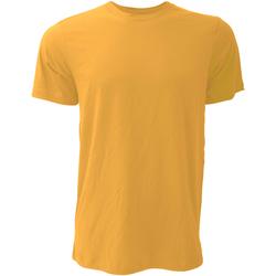 vaatteet Miehet Lyhythihainen t-paita Bella + Canvas CA3001 Mustard