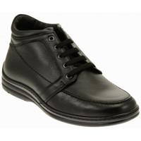 kengät Miehet Derby-kengät Fontana  Monivärinen