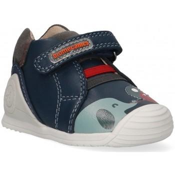 kengät Pojat Matalavartiset tennarit Biomecanics 57348 blue