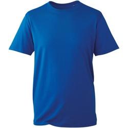vaatteet Miehet Lyhythihainen t-paita Anthem AM010 Royal