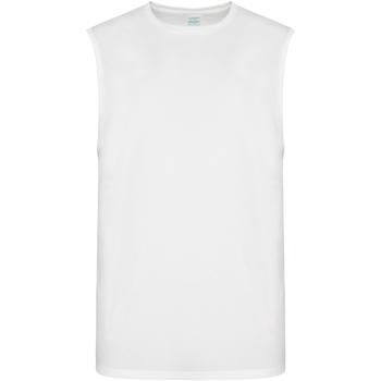 vaatteet Miehet Hihattomat paidat / Hihattomat t-paidat Awdis JC022 Arctic White
