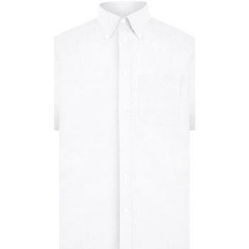 vaatteet Miehet Lyhythihainen paitapusero Absolute Apparel  White