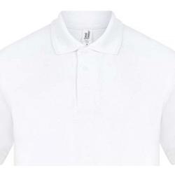 vaatteet Miehet Lyhythihainen poolopaita Casual Classics  White