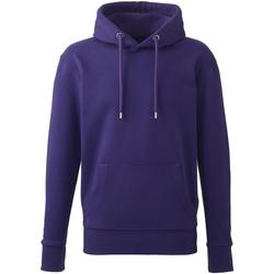 vaatteet Miehet Svetari Anthem AM01 Purple