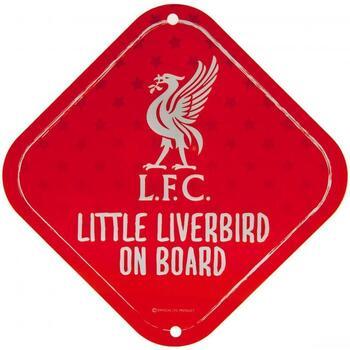 Asusteet / tarvikkeet Urheiluvarusteet Liverpool Fc  Red