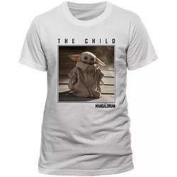 vaatteet Lyhythihainen t-paita Star Wars: The Mandalorian  White
