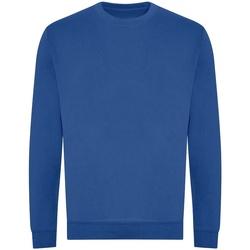 vaatteet Miehet Svetari Awdis JH230 Royal Blue