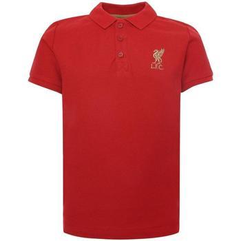 vaatteet Lapset Lyhythihainen poolopaita Liverpool Fc  Red