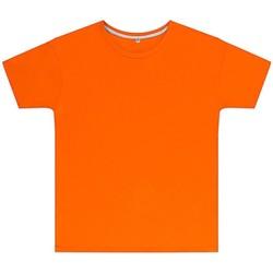 vaatteet Lapset Lyhythihainen t-paita Sg SGTEEK Orange