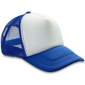 Asusteet / tarvikkeet Miehet Lippalakit Result Headwear RC89X Royal/White
