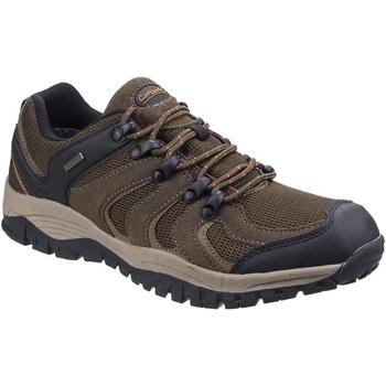 kengät Miehet Vaelluskengät Cotswold  Brown