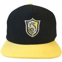 Asusteet / tarvikkeet Lippalakit Harry Potter  Black/Yellow