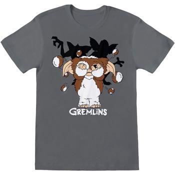 vaatteet Miehet Lyhythihainen t-paita Gremlins  Charcoal Grey