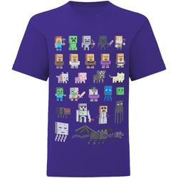 vaatteet Lapset Lyhythihainen t-paita Minecraft  Multicoloured