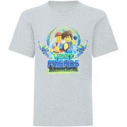 vaatteet Pojat Lyhythihainen t-paita Lego  Grey