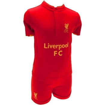 vaatteet Lapset Lyhythihainen t-paita Liverpool Fc  Red