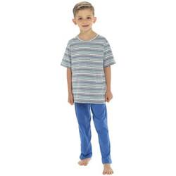 vaatteet Pojat pyjamat / yöpaidat Tom Franks  Navy