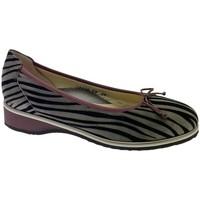 kengät Naiset Balleriinat Calzaturificio Loren LOA1110gr grigio