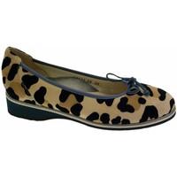 kengät Naiset Balleriinat Calzaturificio Loren LOA1111 nero
