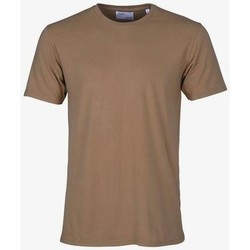 vaatteet Lyhythihainen t-paita Colorful Standard T-shirt  Sahara Camel marron