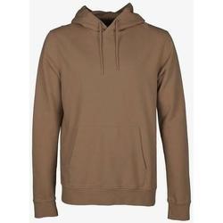 vaatteet Svetari Colorful Standard Sweatshirt à capuche  Sahara Camel marron clair
