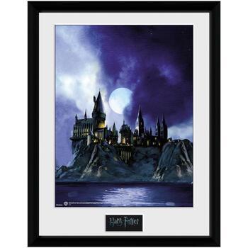 Koti Valokuvakehykset Harry Potter Taille unique Multicoloured
