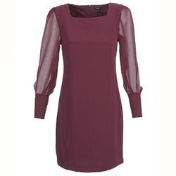 vaatteet Naiset Lyhyt mekko Mexx JAJAVA Bordeaux