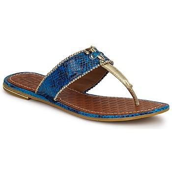 kengät Naiset Sandaalit ja avokkaat Juicy Couture ADELINE Bright / Sininen