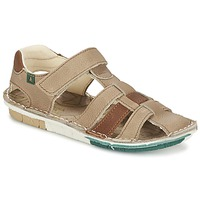 kengät Pojat Sandaalit ja avokkaat El Naturalista KIRI Beige