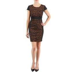 vaatteet Naiset Lyhyt mekko Manoukian EMMA Black / Leopardi