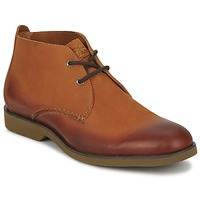 kengät Miehet Bootsit Sperry Top-Sider BOAT OXFORD CHUKKA BOOT Brown