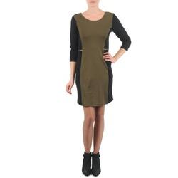 vaatteet Naiset Lyhyt mekko La City ROKAMIL Kaki / Black