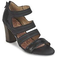 kengät Naiset Sandaalit ja avokkaat Dkode CHARLIZE Black