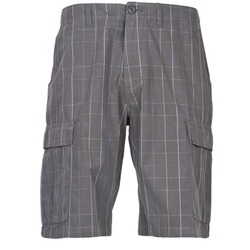 vaatteet Miehet Shortsit / Bermuda-shortsit Patagonia ALL-WEAR CARGO SHORTS Grey / Blue