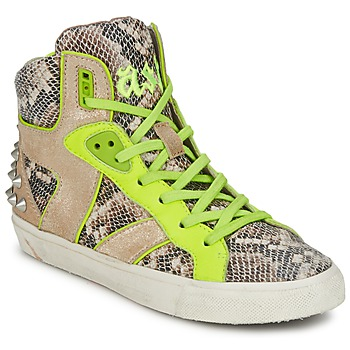 kengät Naiset Korkeavartiset tennarit Ash SONIC Python / Yellow