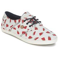 kengät Naiset Matalavartiset tennarit Faguo CYPRESS White / Red