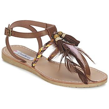 kengät Naiset Sandaalit ja avokkaat Coolway MELROSE Brown
