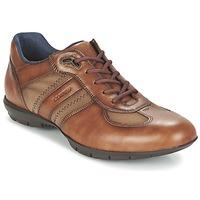 kengät Miehet Derby-kengät Lloyd ARMAND Cognac