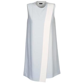 vaatteet Naiset Lyhyt mekko Joseph SOL Grey / White