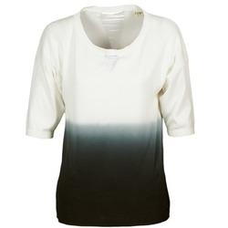 vaatteet Naiset Neulepusero Chipie ALCAR Ecru / Laivastonsininen