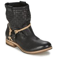 kengät Naiset Bootsit Koah DANIA Black