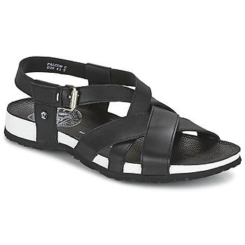kengät Miehet Sandaalit ja avokkaat Panama Jack FALCON Black